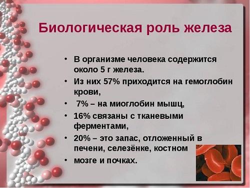 Роль железа в организме