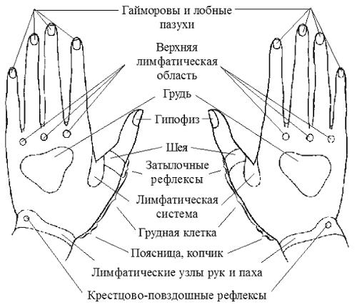 Биологически активные точки на руках