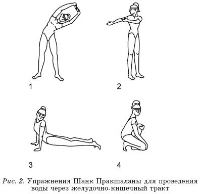 Упражнения для очищения пищеварительного тракта